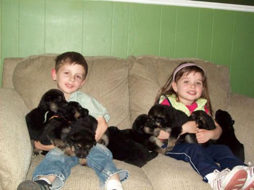 Дети с щенками