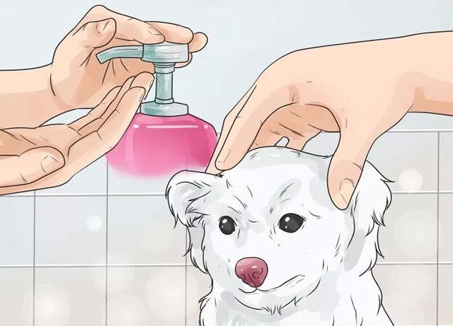 Используйте только качественные шампуни