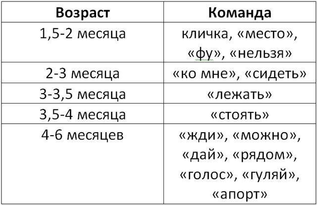 Таблица дрессировки