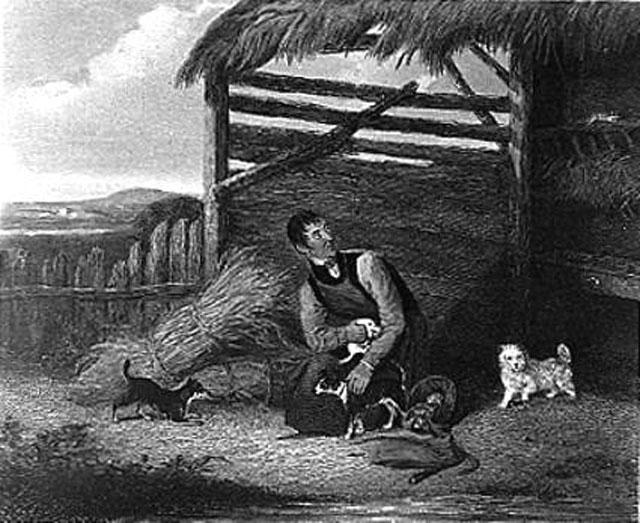 Предки йорков содержались бедняками
