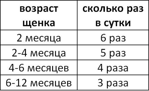 Таблица количества приемов пищи